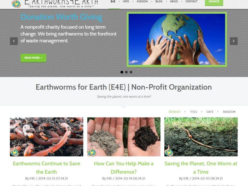Non-profit Website Design e4e1