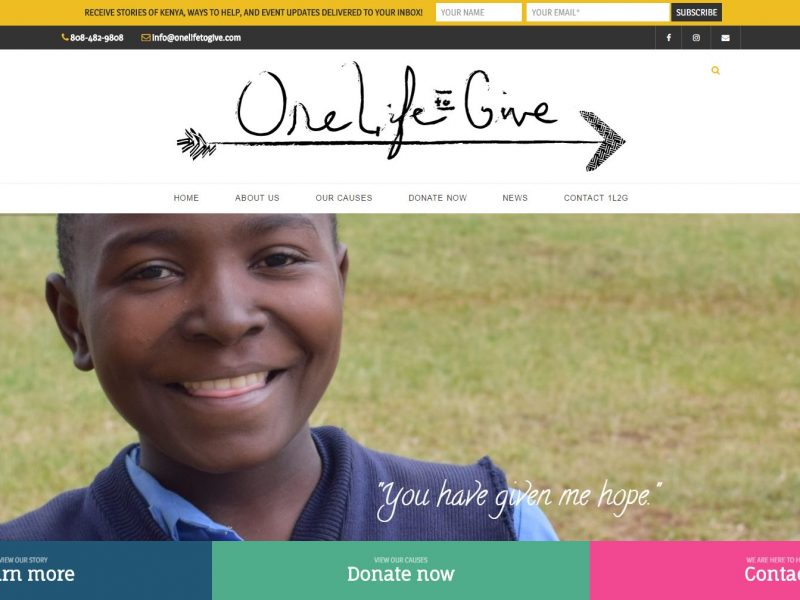 Non-profit Website Design 1