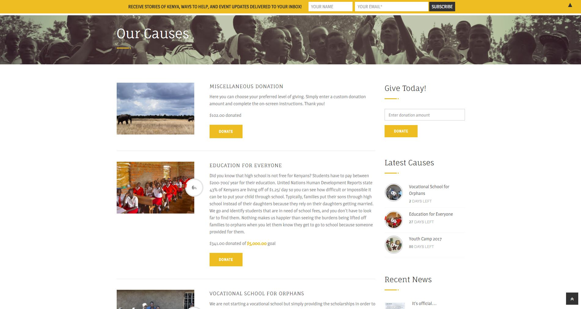 Non-profit Website Design 2